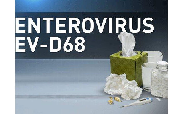 Entervirus cases surface in US, children and those with underlying illness most at risk
