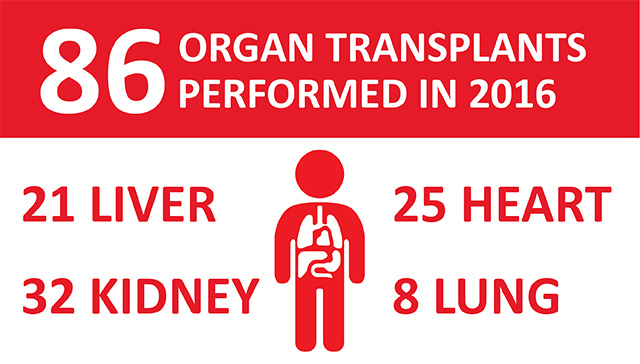 Transplant Services continues to be one of most active programs in nation