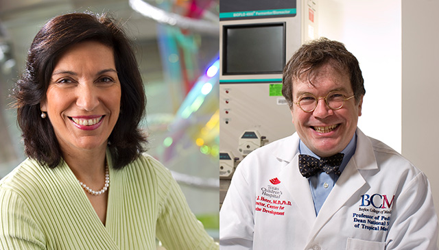 Hotez, Zoghbi join American Academy of Arts and Sciences