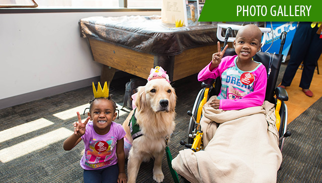 Legacy Tower therapy dog Bailey turns two